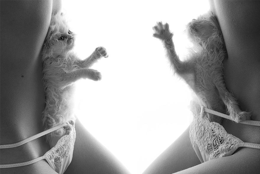 интимные фото кисок девушек